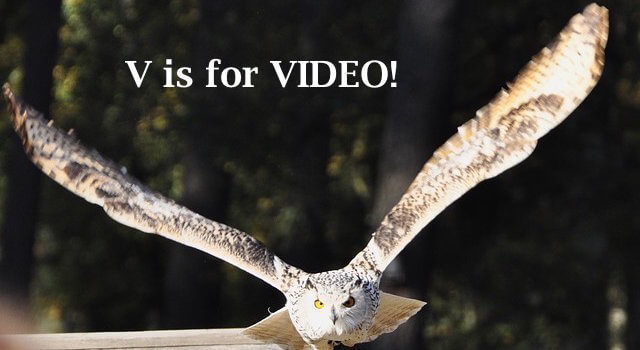 Author Marketing Mastery #31: Set Your Book in Motion with Your Video Book Trailer!