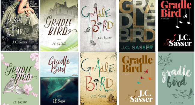 10 Steps to Book Cover Design: from an Author's Birdseye View
